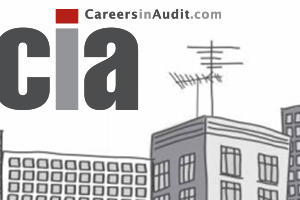 New from the Tarsh Partnership Group: CareersinAudit